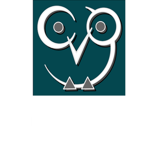 Computational Vision Group Web Site